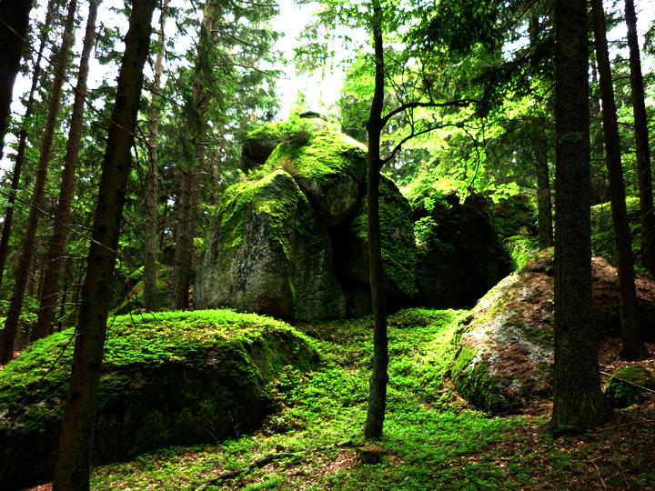 Findling in der Nähe des Predigtstuhles - Waldviertel