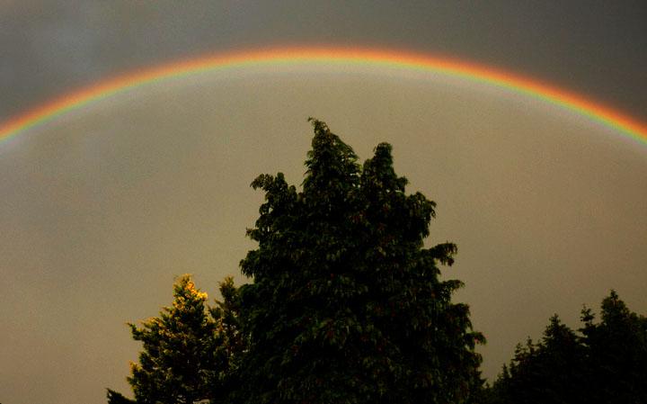 Regenbogen - Dietmanns - Waldviertel