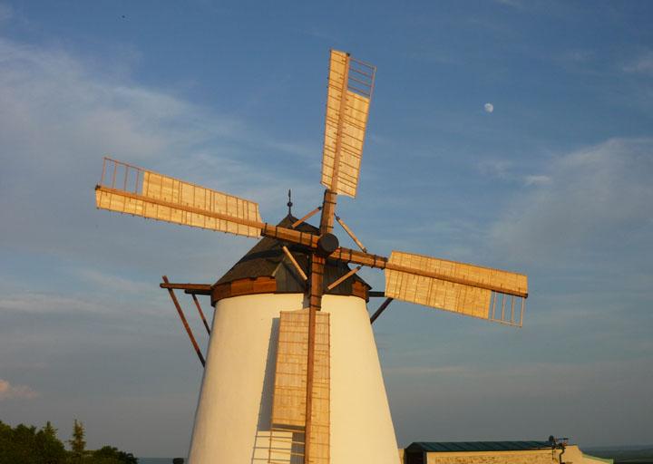 Die bekannte Windmühle in Retz - 2010
